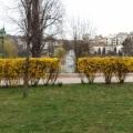 Fotó 1340