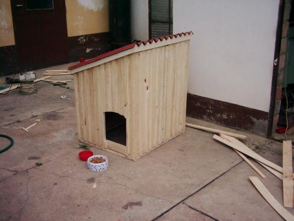 Kutya ház 1